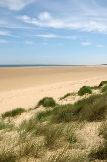 Dunes at Holkham sands, North Norfolk